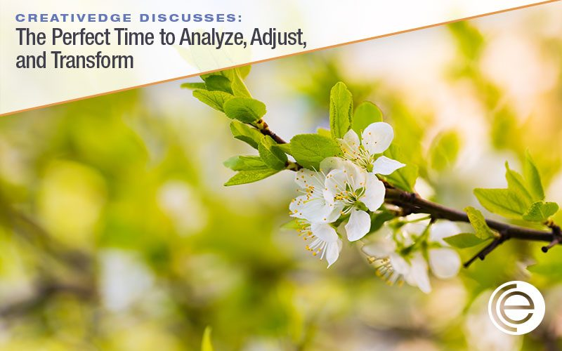 The Perfect Time to Analyze, Adjust, and Transform