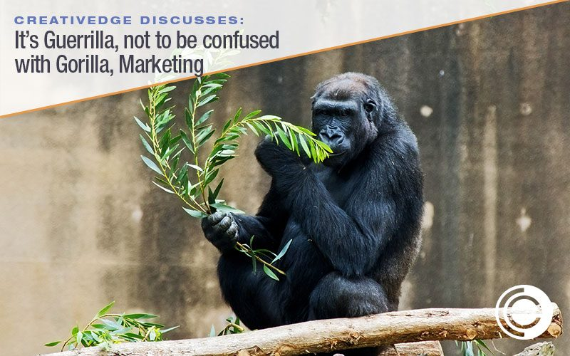 What is Guerrilla (Not to Be Confused With Gorilla) Marketing?